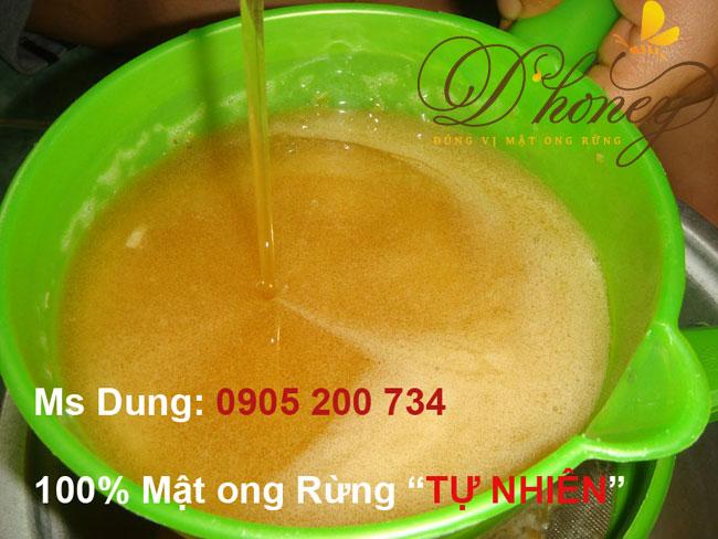 Mat-ong-rung-dau-ra-lam-01