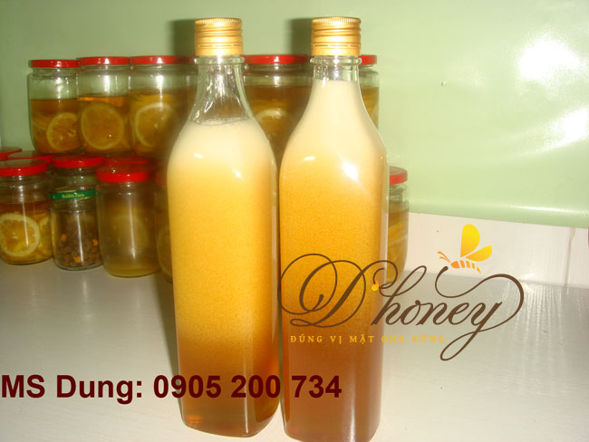 Mat-ong-rung-dau-ra-lam-05
